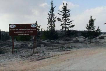 7. Rizoelia National Forest Park