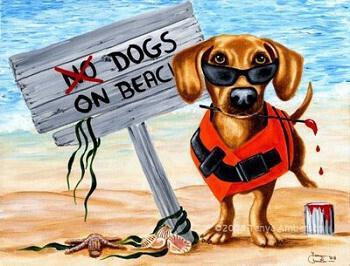 Table Positions Areas For Dog Beaches Larnaka – Softades