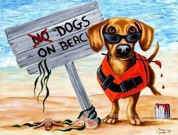 Table Positions Areas For Dog Beaches Limassol Port Tsierkezoi