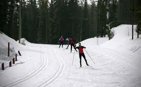 Top Four Ski Resorts in Canmore