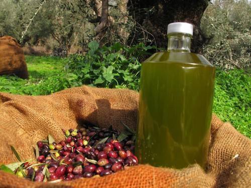 Kypriako Exairetiko Partheno Elaiolado – Cyprus Extra Virgin Olive Oil