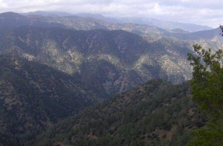 Δάσος Πάφου Πηγή: www.pafosforest.eu